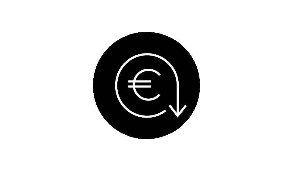 Icon Economic