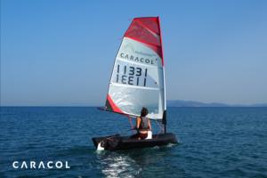 Caracol Beluga barca 3d